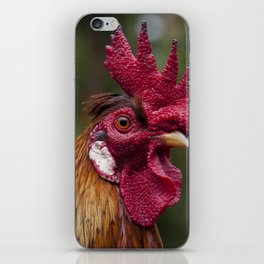 Cockerel in the Jungle iPhone Skin