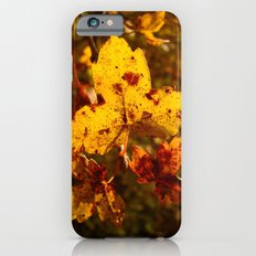 Colors of Fall Slim Case iPhone 6s