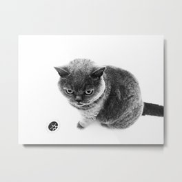 Lizzie & The Plug Hole: Remastered Metal Print
