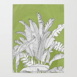 Banana Leaves Illustration - Green Poster