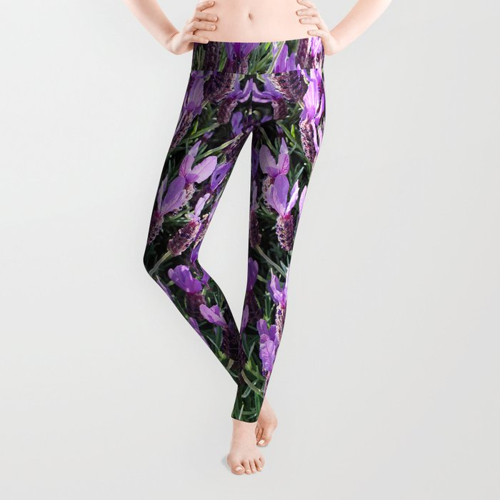 SPANISH LAVENDER AND ONE BEE Leggings