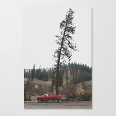 Tree Truck Canvas Print