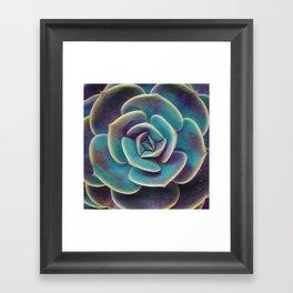 Purple & Blue Succulent Framed Art Print