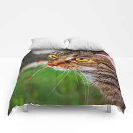 El Gato en la Ventana Comforters
