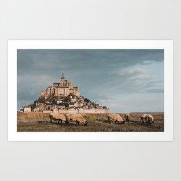 Sheep at Mont saint michel france Art Print
