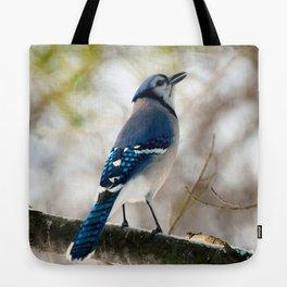 Blue Jay Calling Tote Bag