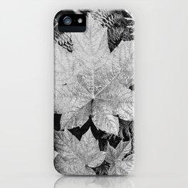 Ansel Adams - Leaves iPhone Case