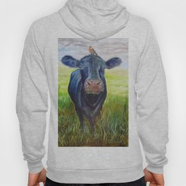 Cow and a Robin Hoody