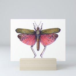 Red Locust Mini Art Print