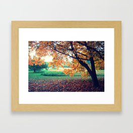 Purple Fall 2 Framed Art Print