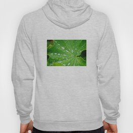 Green Life - The Peace Collection Hoody