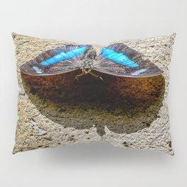 Blue Morpho Butterfly by Teresa Thompson Pillow Sham
