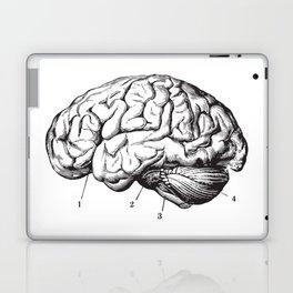 Human Brain Sideview Anatomy Detailed Illustration Laptop & iPad Skin