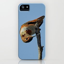 What's Cheese iPhone Case