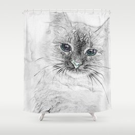 Siberian Kitty Cat Laying on the Marble Slab Shower Curtain