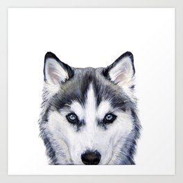 siberian husky2 Art Print
