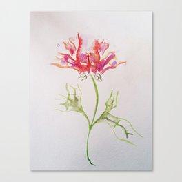 Butt Flowers Canvas Print