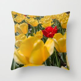 Many yellow tulips and one red Throw Pillow