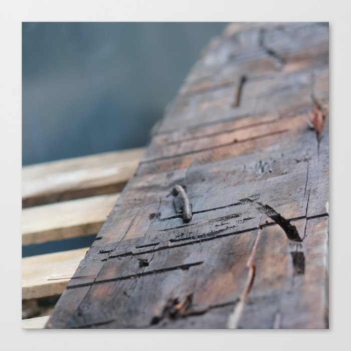 Pallettes Canvas Print