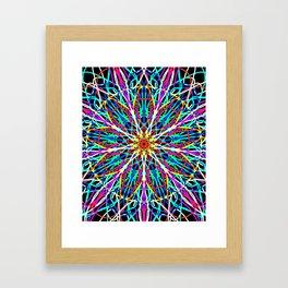 Kaleidscope Flower Framed Art Print