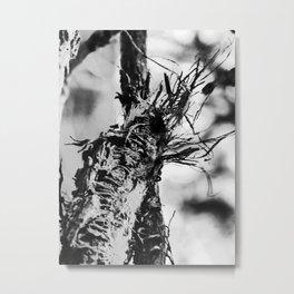 ragged vine III Metal Print
