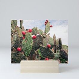 Prickly Pears Mini Art Print