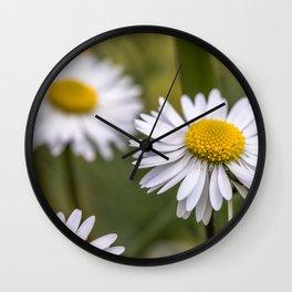 Daisy field Wall Clock