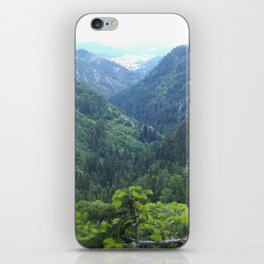 The green valley iPhone Skin