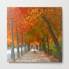 Fall in El Retiro Madrid Metal Print