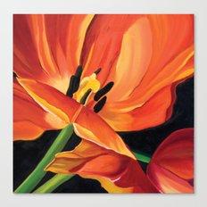 Princess Irene Tulip I Canvas Print