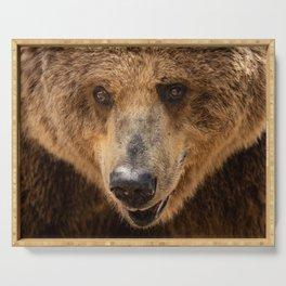 Brown Bear Portrait Serving Tray