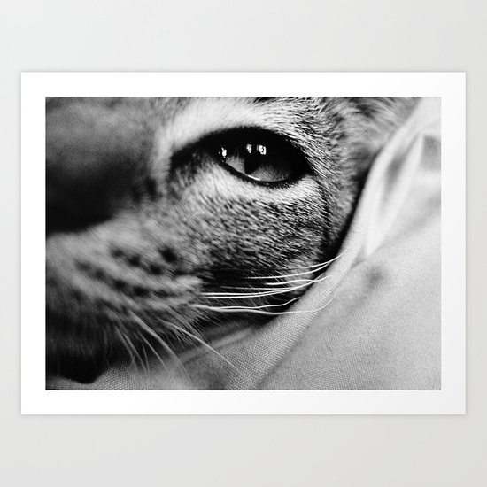 uschi the cat Art Print