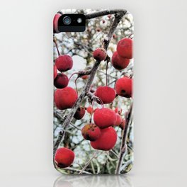 Crabapples in Winter iPhone Case