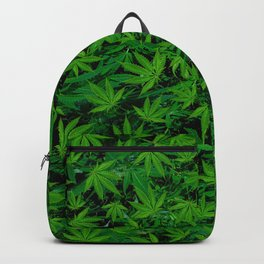 Weedy Square Backpack