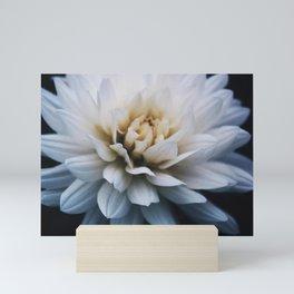 White Flower Mini Art Print