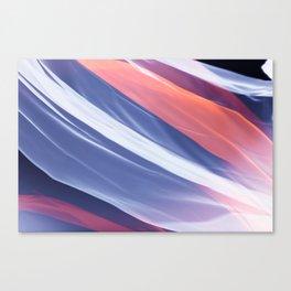 silks 2 Canvas Print
