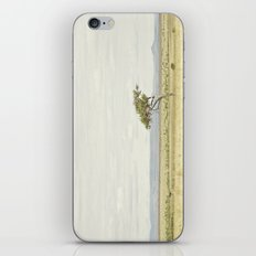 tree of life::kenya iPhone & iPod Skin