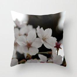 Sakura blossoms up close Throw Pillow