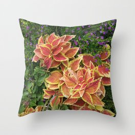 Orange Coleus Throw Pillow