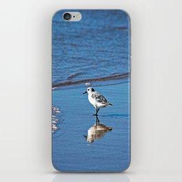 Sandpiper Coastal Bird Beach Sea Shore iPhone Skin