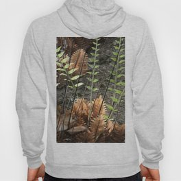 Walk in a Tropical Forest Hoody