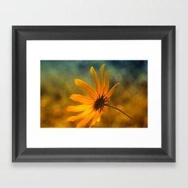 "Black- Eyed- Susan ""Bokeh"" Framed Art Print"