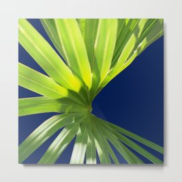 Tropical Plant in the Sun 2 Metal Print
