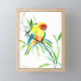 Sun Conure Parakeet, tropical yellow green bird decor Framed Mini Art Print