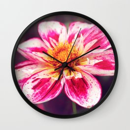 At First Blush Wall Clock