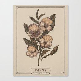 Pansy Canvas Print