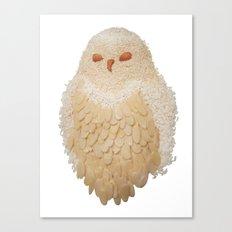 Owl Collage #4 Canvas Print