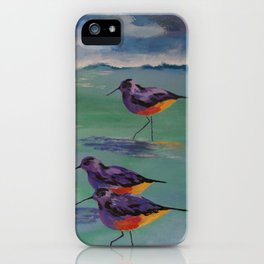 Dance of the Sandpipers iPhone Case