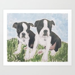 Boston Puppies Art Print