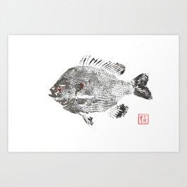 Bluegill 4 Art Print